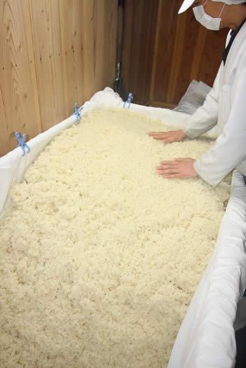床に引込む、白味噌(西京味噌)の作り方、手順