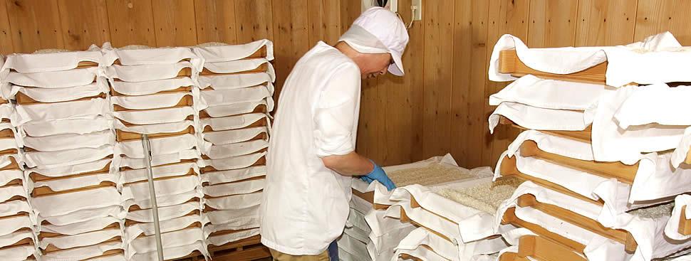 白味噌の麹を手作りする